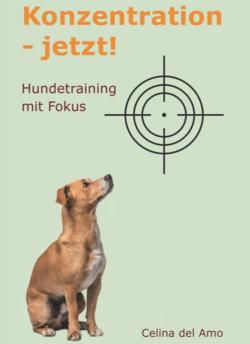 Konzentration - jetzt, Buch von Celina del Amo - Easy Dogs
