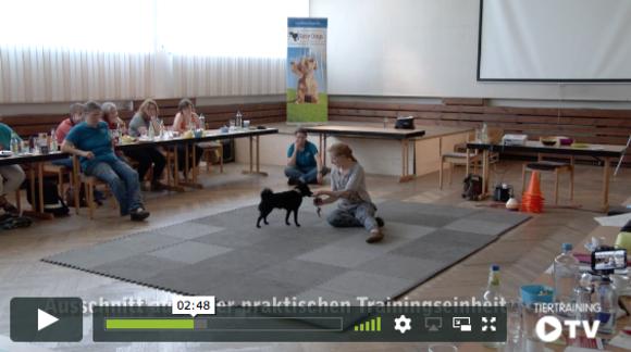 Der gläserne Trainer (Seminarfilm) - Easy Dogs