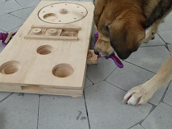 hundespielzeug selber bauen